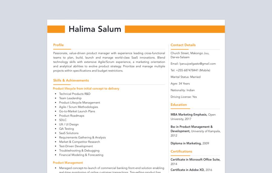 Bold Skills Based CV